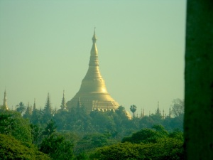 shwedagon fr window